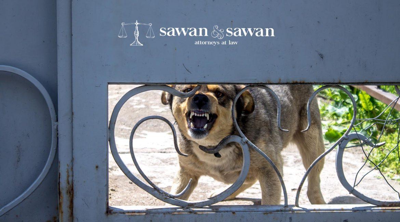 Chris Brown Dog Bite Injury Lawsuit, Personal Injury Lawyers | Sawan and Sawan